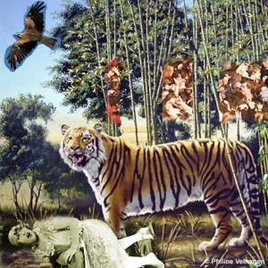 find_the_hidden_tiger